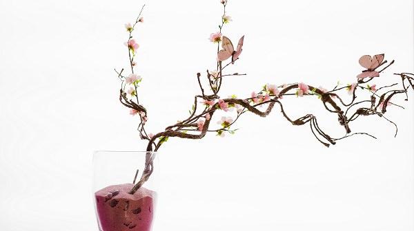Schöne stylische Pflanze